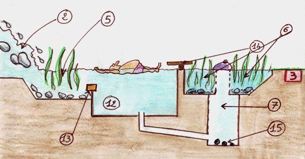 Vous ne ressortirez pas de cette piscine les yeux rougis et la peau irritée par le chlore. L'épuration de l'eau se fera naturellement, en circuit fermé, grâce à un écosystème basé sur le cycle d'auto-épuration assurée par une filtration minérale et des...