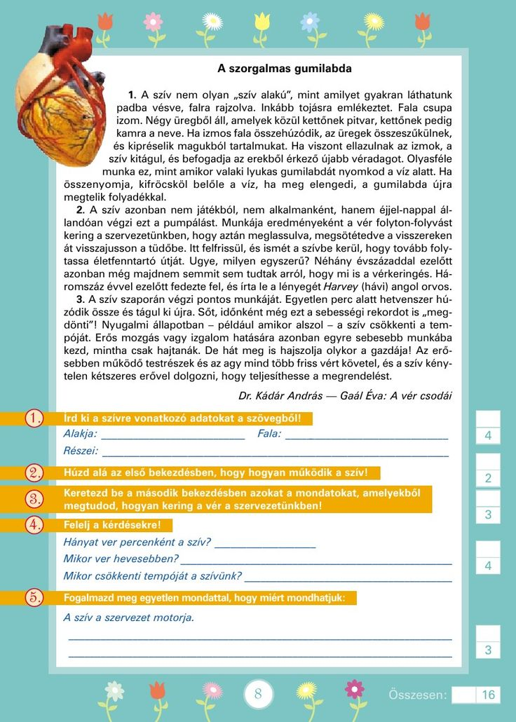 Szövegértést fejlesztő gyakorlatok 3.o.