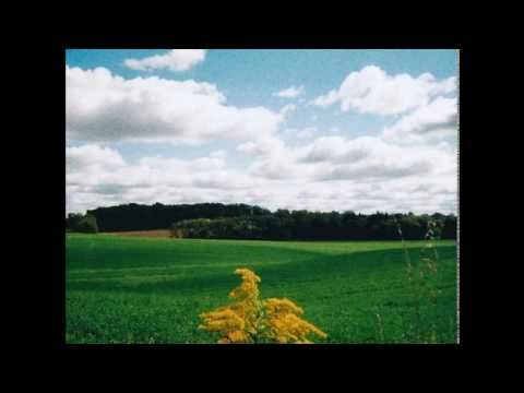 Mark Kozelek — Famous Blue Raincoat - YouTube