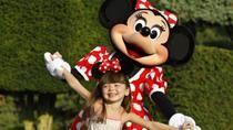 Disneyland Paris Ticket: 1 Day 2 Park, Paris, Disney® Parks