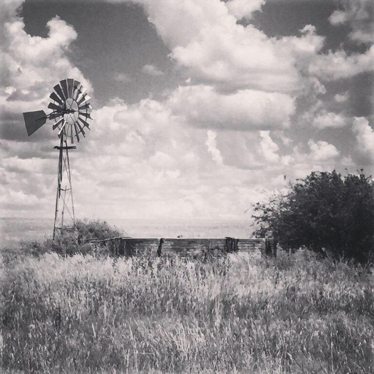 Lonesome windmill in black and white