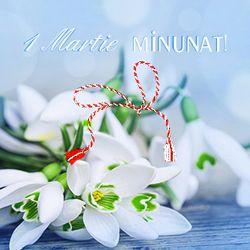 A venit primavara cu bucurii de impartasit, ghiocei infloriti peste tot, iar adierea vantului poarta mireasma florilor. 1 Martie minunat! http://ofelicitare.ro/felicitari-de-1-martie/1-martie-minunat-784.html
