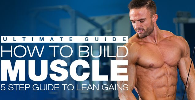 Build Muscle Without Hitting A Muscle Building Plateau