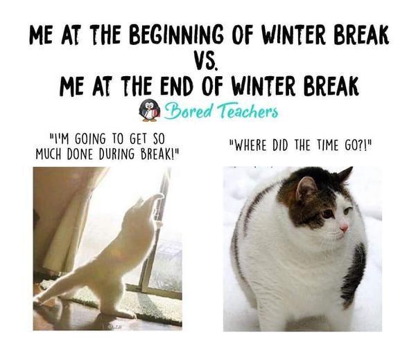 Meme Me At The Beginning Of Winter Break Vs Me At The End Of Winter Break Skinny Cat I M Going To Get So Muc Bored Teachers Teacher Memes Teacher Jokes