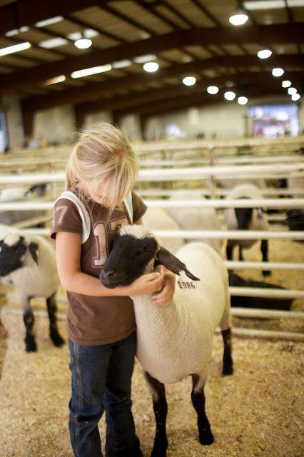 Tips on enjoying the Utah County Fair