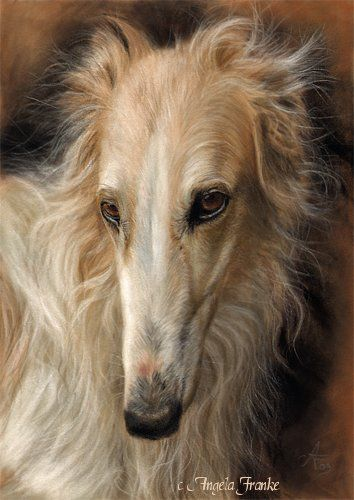 Kunstdruck Art Print Barsoi Borzoi Sighthound dog 8 x12, dog Levrier, Windhund
