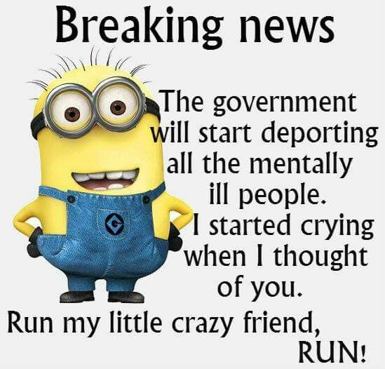 Minions I M Not Crazy Quote: 288 Best Images About Minions, Poems Etc... On Pinterest