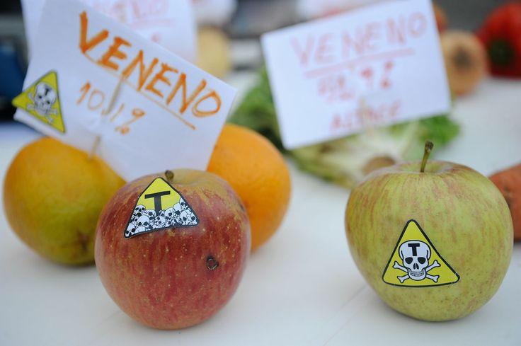 Movimentos populares fazem campanha para aprovar a Política Nacional de Redução de Agrotóxicos (PNARA)