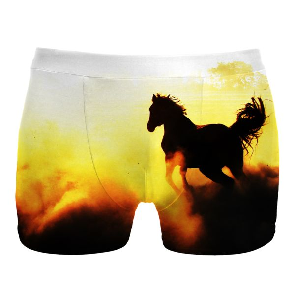 http://mrgugu.com/collections/underwear/products/mustang-underwear