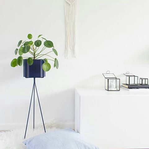 ferm LIVING Plant Stand & Hexagon pot in dark blue: https://www.fermliving.com/webshop/shop/green-living.aspx
