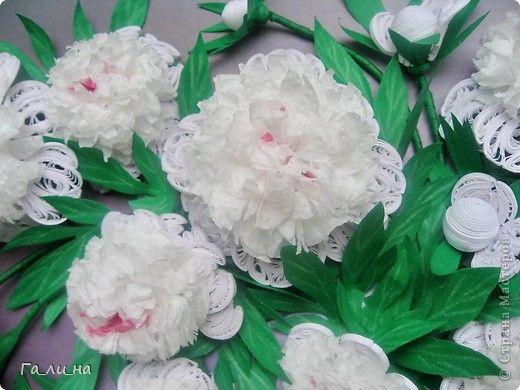 Картина панно рисунок Квиллинг Мой букет белых пионов Бумага Бумажные полосы фото 2