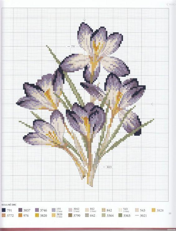 Gallery.ru / Photo # 73 - Herbier - Mosca