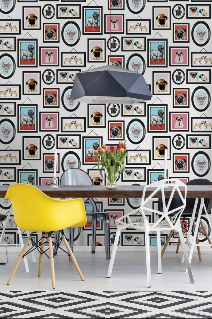 An Adorable, Fun Design Featuring Cute Pugs In Frames Posing And Dressed In  Different, Quirky Styles. Wallpaper Direct ...