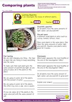 Outstanding Science Year 2 - Plants | Comparing Plants
