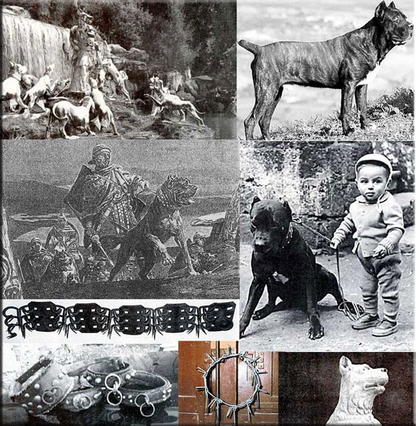 Cane Corso through history! Looks like being good with kids goes back a long way :)