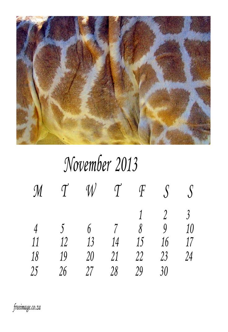 November 2013 free calendar animal theme. All 12 months on http://freeimage.co.za/free-2013-calendar-to-download-animal-theme