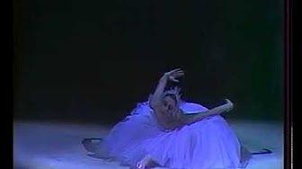 памяти Майи Плисецкой Лебединое озеро 1976 - YouTube