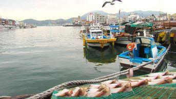 5. Tongyeong