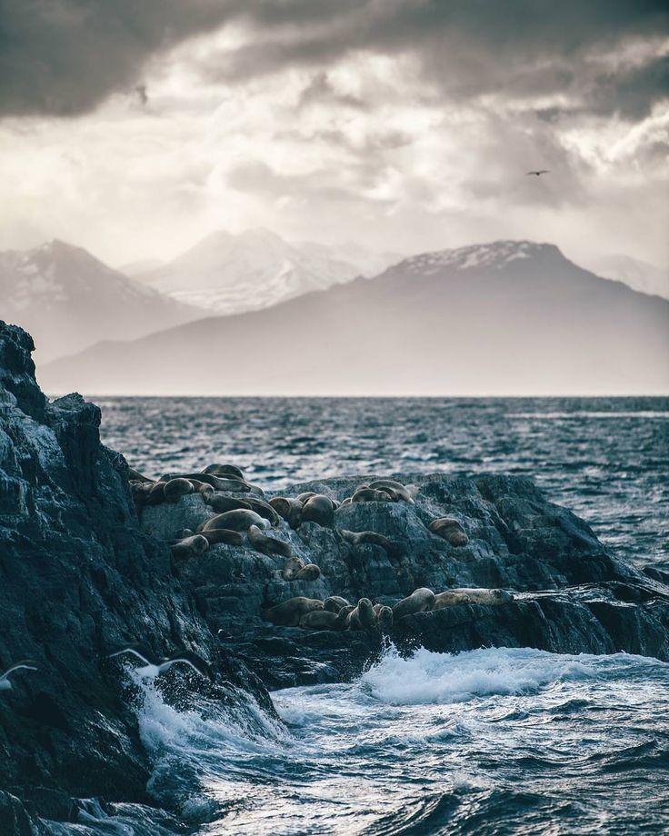 "Gefällt 4,629 Mal, 215 Kommentare - André Alexander (@formgestalter) auf Instagram: ""Views from of the best sunset boat rides I've ever had. ⛴️ #visitargentina #argentina"""