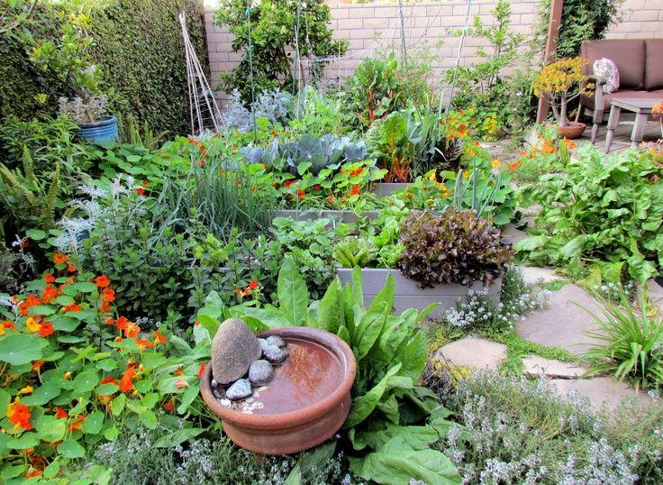 Gardenfuzzgarden.com German Herb And Vegetable Garden | Gardenfuzzgarden.com