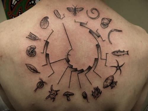 Biological Tree of Life (not keen on the outer ring of symbols bit like the dot work between the lines).
