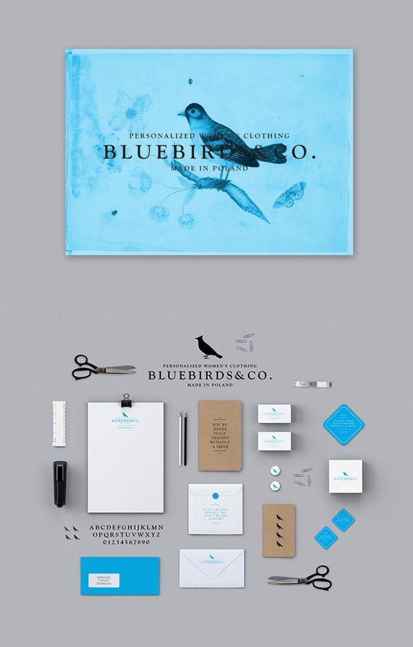 BluebirdsCo. by Zdunkiewicz , via Behance | #stationary #corporate #design #corporatedesign #identity #branding #marketing
