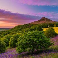 Roseberry Sunset
