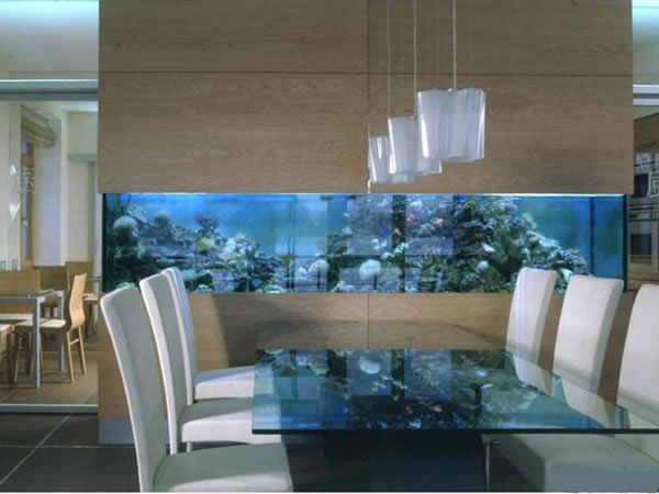35 Inspiring Custom Built In Aquarium Setup