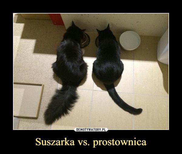 Suszarka vs. prostownica –