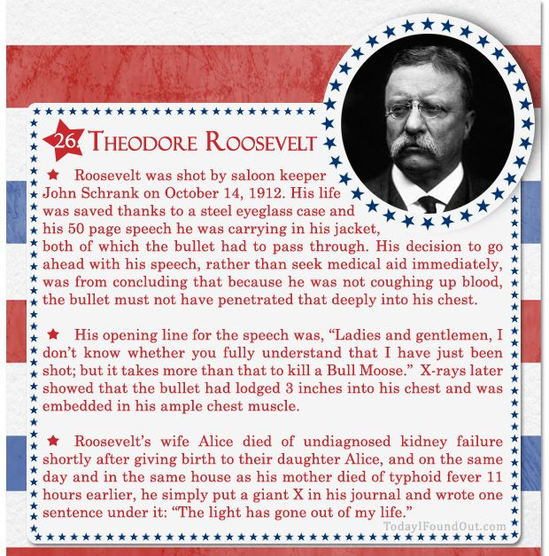 100+ Facts About US Presidents 26- Theodore Roosevelt