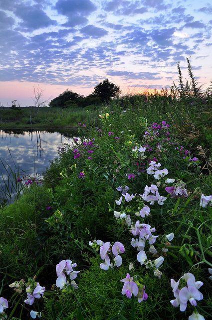 Sanctuary, Galilee Island, Narragansett, Rhode Island