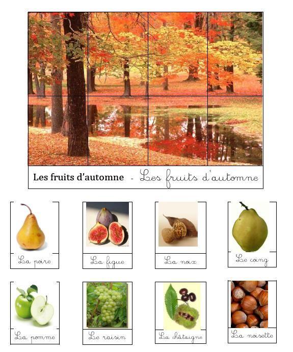 ovocie konzumované v jeseni