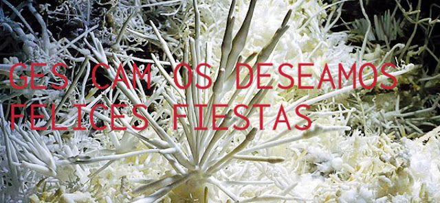 Espeleo Club de Descenso de Cañones (EC/DC): Felices Fiestas del GES Club Alpino Manzaneda