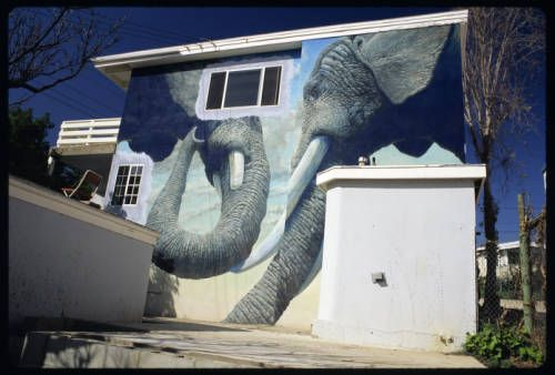 Two elephants, Santa Monica, 1981. http://digitallibrary.usc.edu/cdm/ref/collection/p15799coll15/id/824