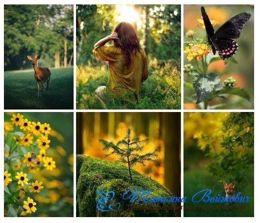 Любить себя, благодарить судьбу и быть добрым.Как правильно жить  Любовь — многогранное понятие. Это любовь к какому-то конкретному человеку, к семье, к природе, родине, к жизни. Но, прежде всего, это любовь к себе. Любить себя — значит праздновать сам факт существования своей личности и быть благодарным богу за это. Любовь к себе — это основа, которая делает целесообразной долгую жизнь человека. Причем любить себя следует таким, какой вы есть. И никакой самокритики.  #татьяна_войтович…