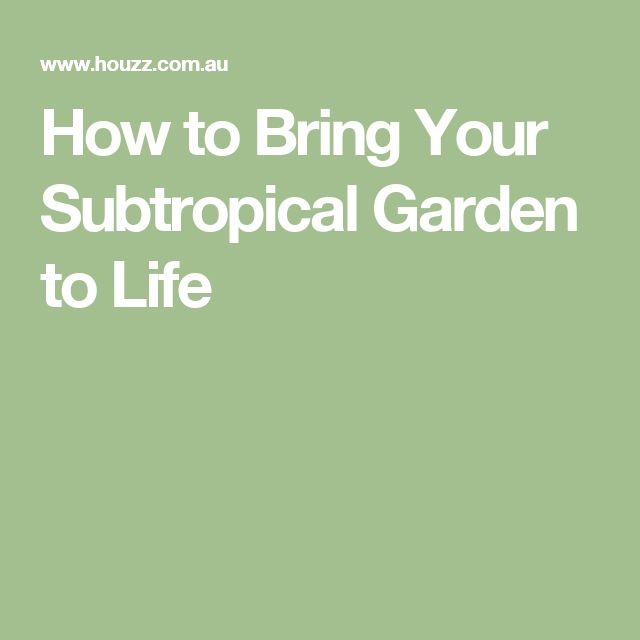 How to Bring Your Subtropical Garden to Life