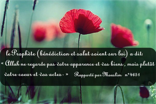 partager - Hadith Relation Hors Mariage
