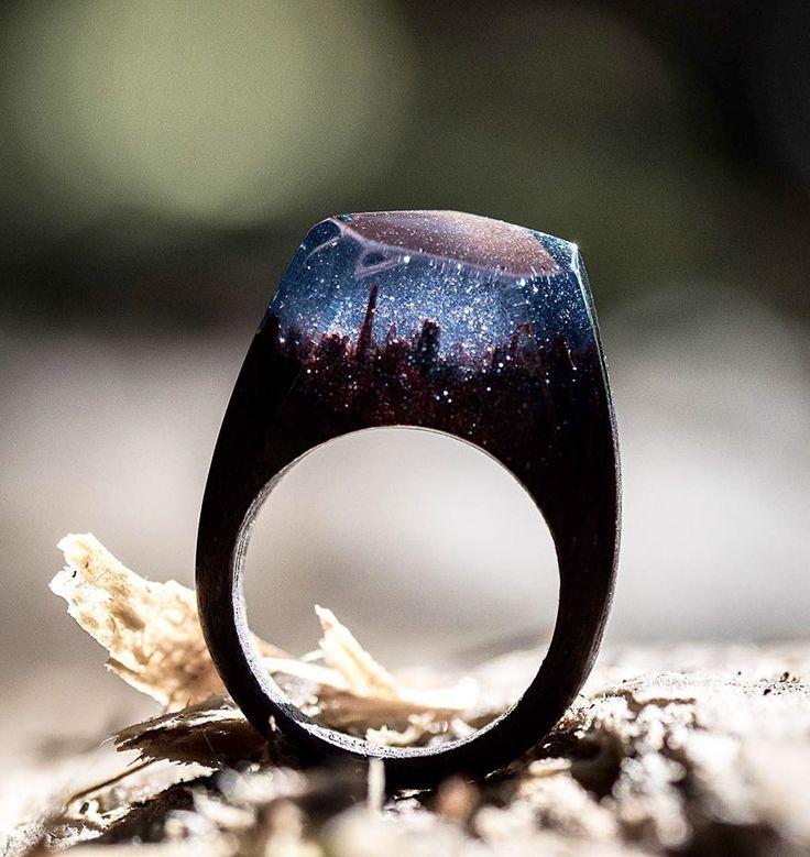 Mundos en miniatura dentro de estos anillos de madera que captan la belleza de las distintas estaciones