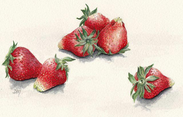 six strawberries by debra morris, via Flickr