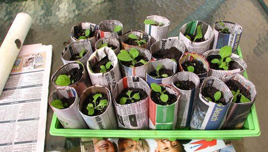Great ideas for repurposing newspaper: Newspaper Gardens, Gardens Ideas, Gifts Cards, Seeds Pots, Repurpo Newspaper, Repurposed Newspaper, Clever Ideas, Reuse Newspaper, Newspaper Seeds