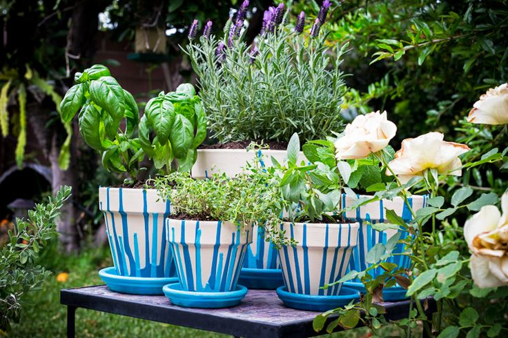 Terra cotta pots and saucers offer the perfect blank canvas to create beautiful, unique works of art and add color and class to any outdoor space. Since Mother's Day is right around the corner, I  created a gift for my mother that would not only be useful, but would add some pizzazz to her back …
