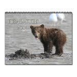 Bear Cubs calendar