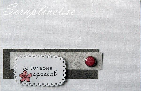 Card, Clean & Simple, Scrapbooking
