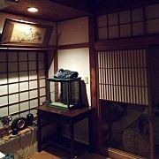 猫間障子/欄間/座敷/鉛筆削りオブジェの会/saboten 倶楽部/日本家屋…などに関連する他の写真