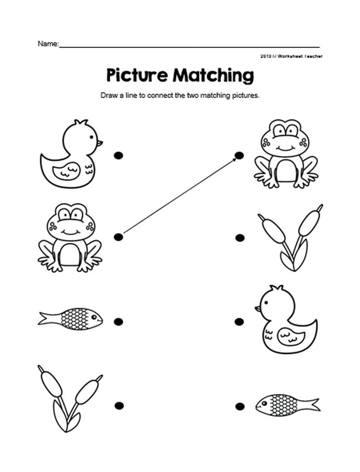 10 Pond Life Habitat Preschool Curriculum Activities