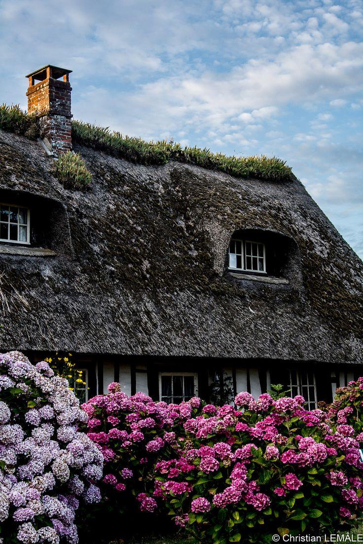 thatched cottage, blosseville, pays de caux, france