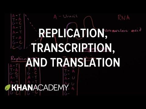 I will use this Khan Academy video because videos provide a different explanation and the repetition that students need in order to learn.