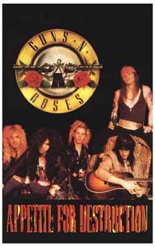 Guns N' Roses Appetite for Destruction Band Shot Music Poster 11x17
