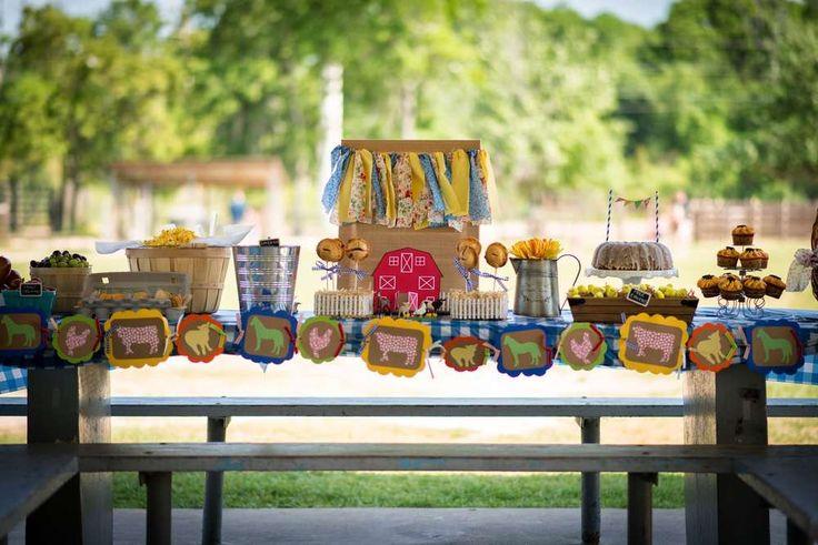 Farm, Barnyard Birthday Party Ideas | Photo 4 of 14 | Catch My Party