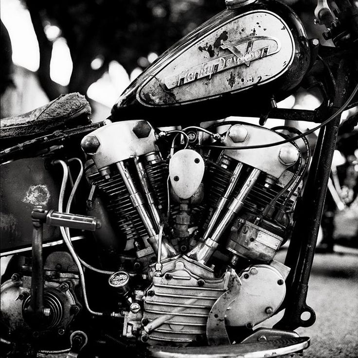 Harley | Hasselblad | Ilford Delta 400 | Ronnie Conlin | Film Shooters Collective | 35mm | Medium Format | and Large Format Film Photography